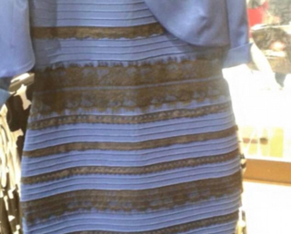 "The Science of Color and ""That Dress"""