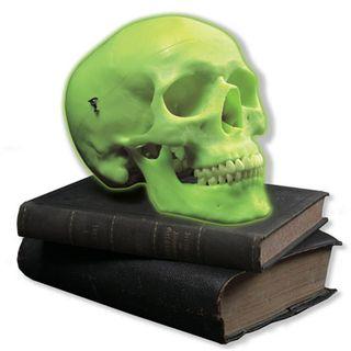 Glow in the dark Halloween Skull