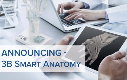 Announcing 3B SMART ANATOMY – the new Generation of Anatomical Models